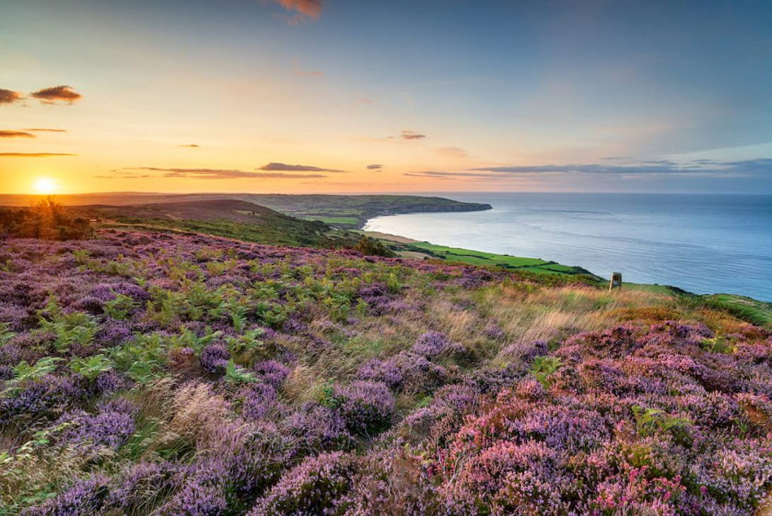 North York Moors National Park   Coast and Countryside Adventures with TT