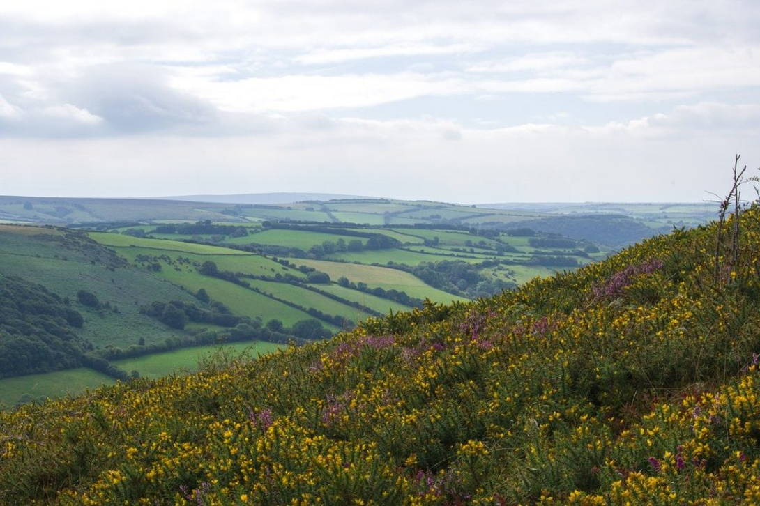Exmoor National Park   Coast and Countryside Adventures with TT