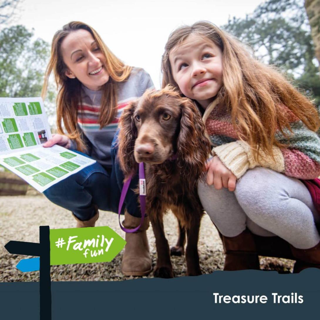Family Fun - Dog Friendly Trails