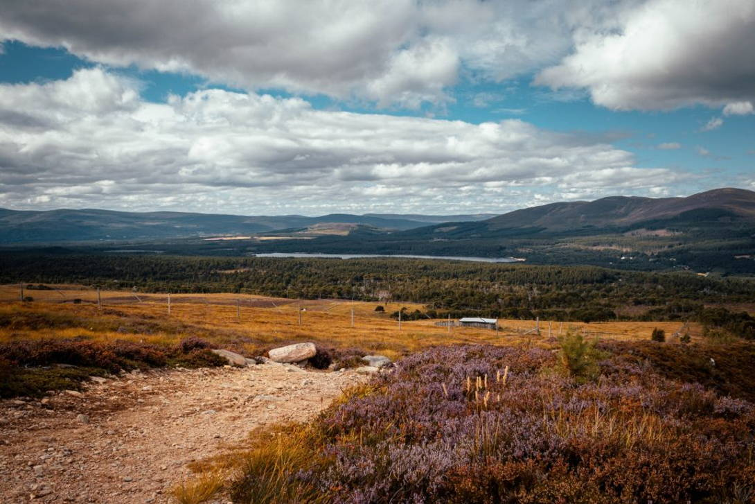 Cairngorms National Park   Coast and Countryside Adventures with TT