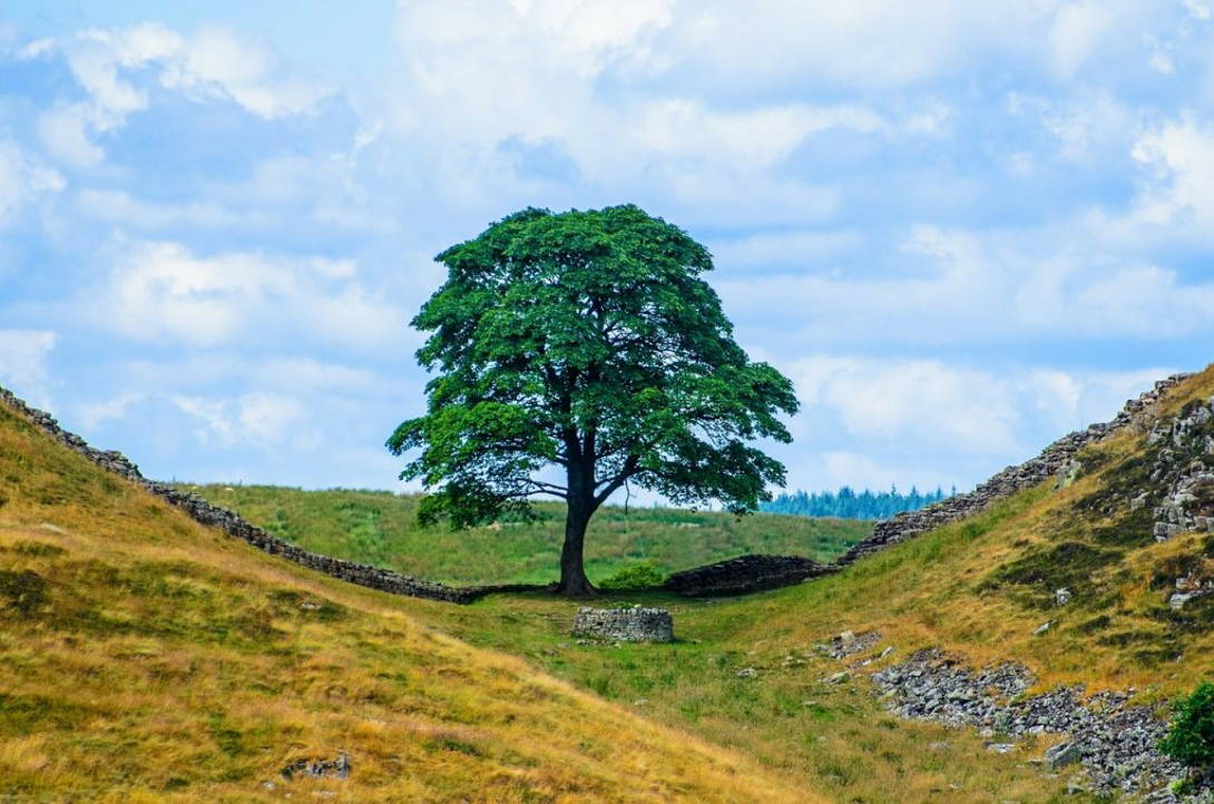 Northumberland National Park   Coast and Countryside Adventures with TT