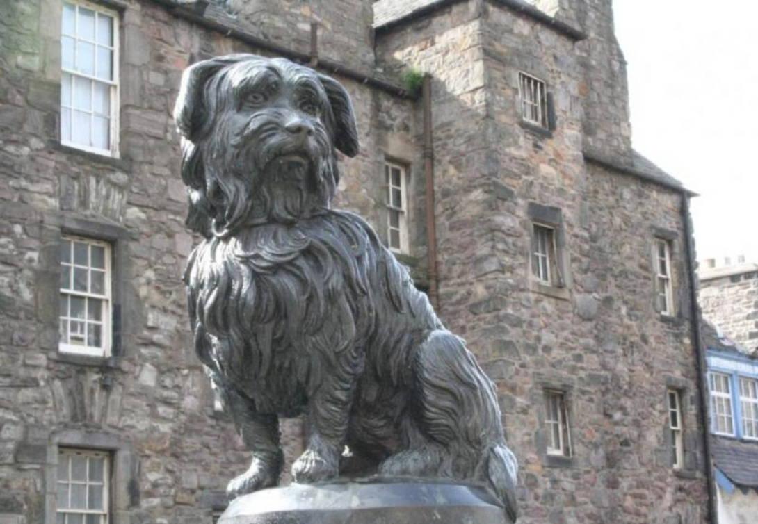 Bobby the amazing Skye Terrier